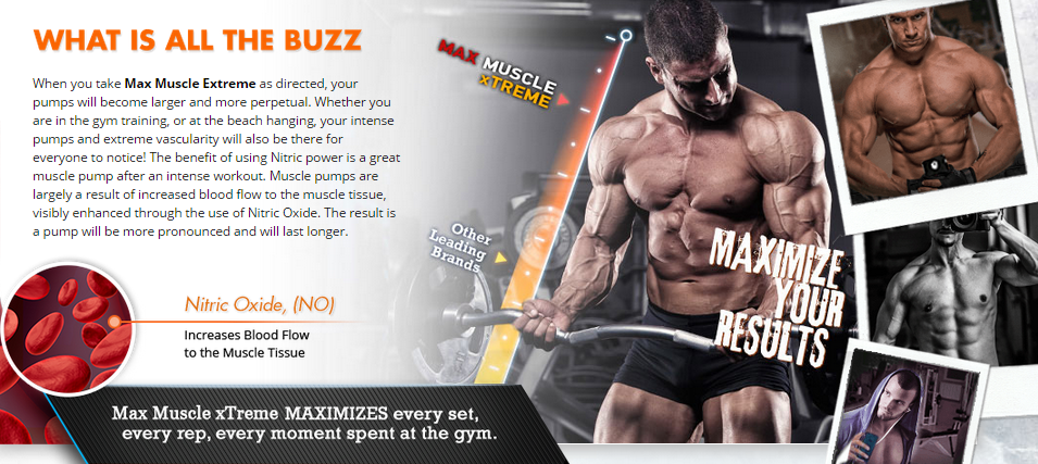 http://www.healthyminimarket.com/max-muscle-extreme/